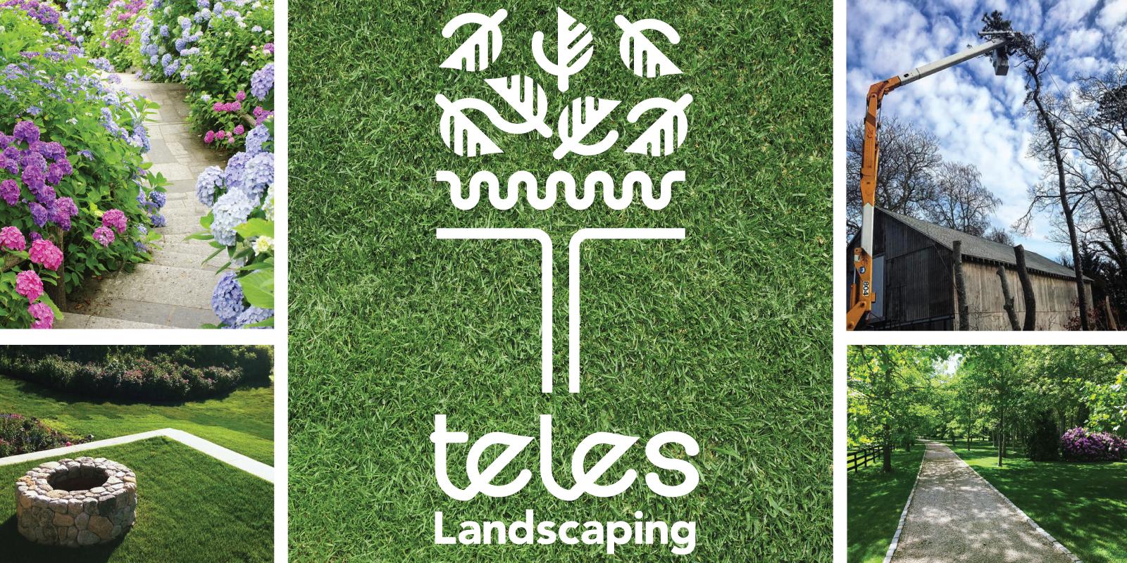 Teles Landscaping